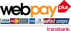 logo web pay plus